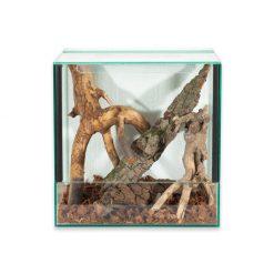 Prémium pók terrárium B | 40x40 - Bugs-World.com