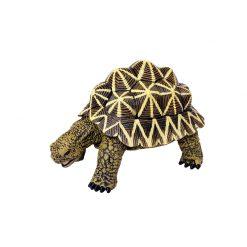 4D Puzzle Összerakható állatfigura   Indiai csillagteknős
