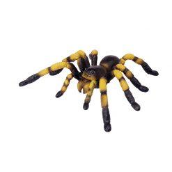 4D Puzzle Összerakható állatfigura   Tarantula