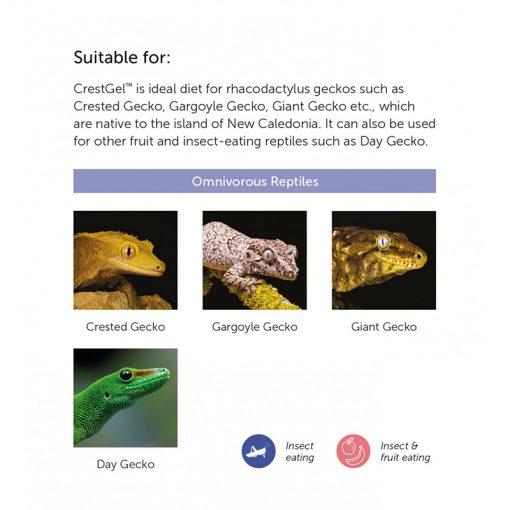 Hikari Reptile CrestGel Teljes értékű prémium gél táp | 50g