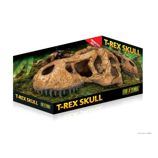 MOCK-UP_T-Rex-Skull_PT2859