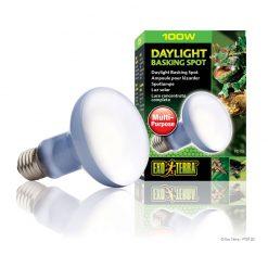 PT2133_Daylight_Basking_Spot_Set