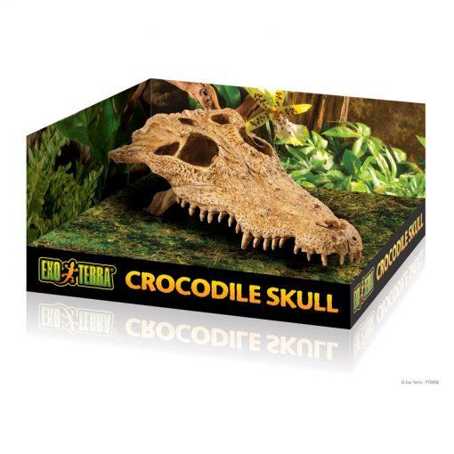 PT2856_Crocodile_Skull_Packaging