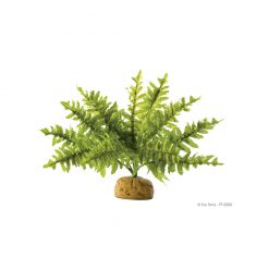 ExoTerra Rainforest Plant Fern | S