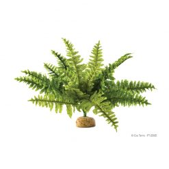 ExoTerra Rainforest Plant Fern | M