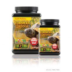 ExoTerra European Tortoise
