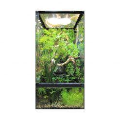 ZooMed Paludarium Terrarium és akvárium egyben berendezési példa