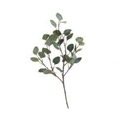 Bugs-World Gum Tree Eukaliptusz műnövény | 55 cm