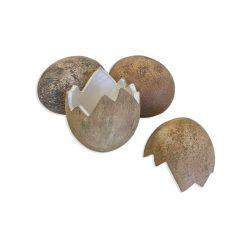 Bugs-World Dinosaur Egg Törött dinoszaurusz tojás | L