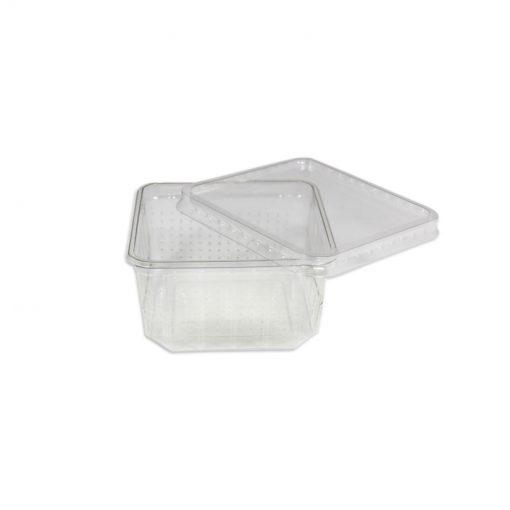 Bugs-World Perforált tücskös doboz 500 ml | 1