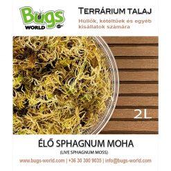 Bugs-World Prémium élő sphagnum moha | 2L