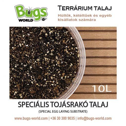 Bugs-World Speciális tojásrakó talaj terráriumba | 10L