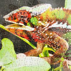 ChameleonFarm A3 Puzzle 300 | Párduckaméleon