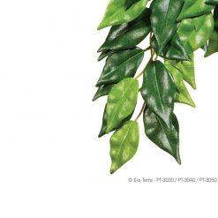 ExoTerra Jungle Plant Ficus