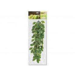 GiganTerra Ficus Természethű futónövény