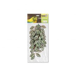 GiganTerra Tradescantia Természethű futónövény | 45 cm