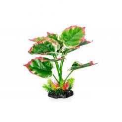 GiganTerra Piros szélű tarka levelű talpas műnövény | 22 cm