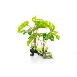 GiganTerra Philodendron monstera deliciosa talpas műnövény