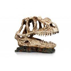 GiganTerra Dino Skull Dinoszaurusz koponya 1