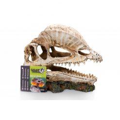 GiganTerra Dino Skull Dinoszaurusz koponya 2