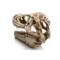 GiganTerra T-Rex Skull XXL Terráriumi dekoráció és mászóka