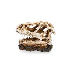 GiganTerra T-Rex Skull Dinoszaurusz koponya 3