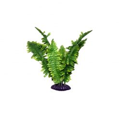 Komodo Boston Fern Szobapáfrány műnövény | S