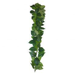 Komodo Ficus Silk Vine Selyem műnövény | 60 cm