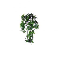 Komodo Philodendron Hanging Plant Műnövény | 30 cm