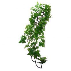 Komodo Philodendron Hanging Plant Műnövény