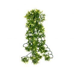 Komodo Croton Plant Csodacserje műnövény | 60 cm
