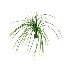 Lucky Reptile Congo Grass Műnövény | 50 cm