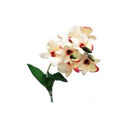 Lucky Reptile Fehér orchidea művirág