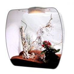 Lucky Reptile Life Box 35 terrárium LED világítással