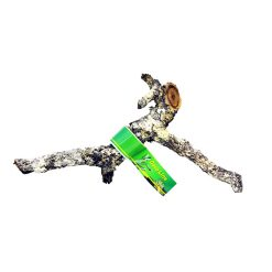 Lucky Reptile Cork branch parafa ág | XL