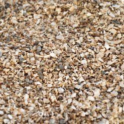 Kerf Muschelgrit Darált kagylóhéj talaj terráriumba | akváriumba