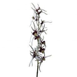 Bugs-World Pókorchidea művirág | Lila-Fehér
