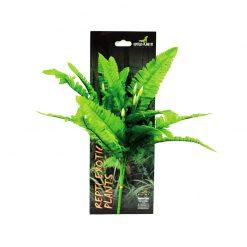 Reptiles-Planet Exotic Plant Nephrolepis cordifolia presl Műnövény
