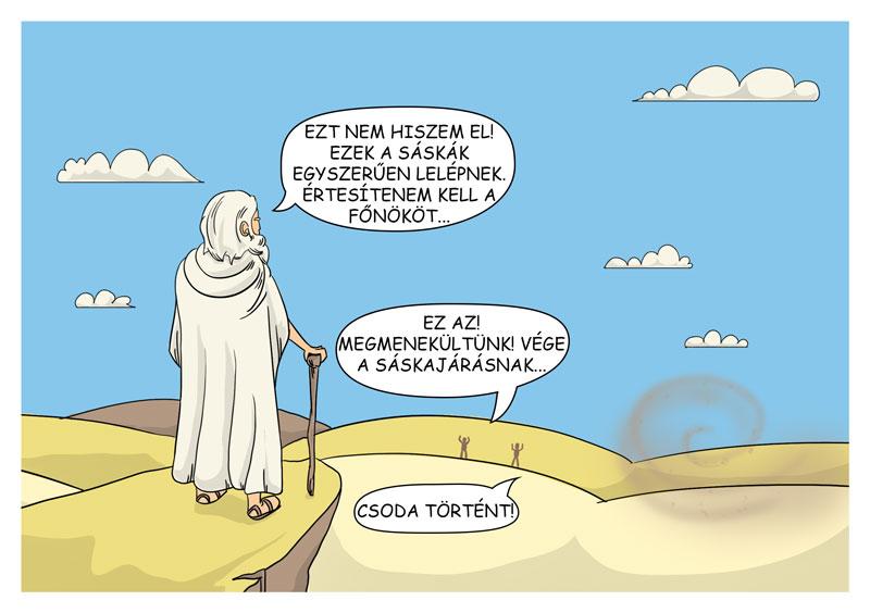 saskajaras6_szerk