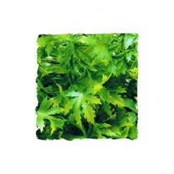 ZooMed Cannabis természethű műnövény