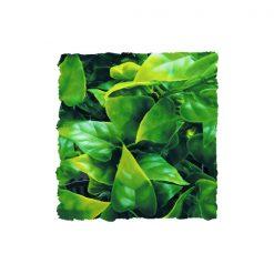 ZooMed Mexikói Filodendron műnövény