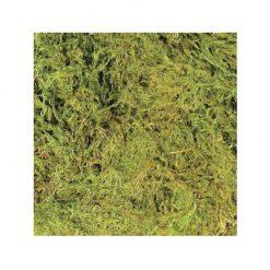 ZooMed Terrarium Moss szárított terráriumi moha | S